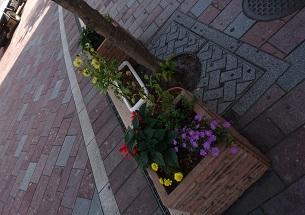 路地裏の花1 (2)